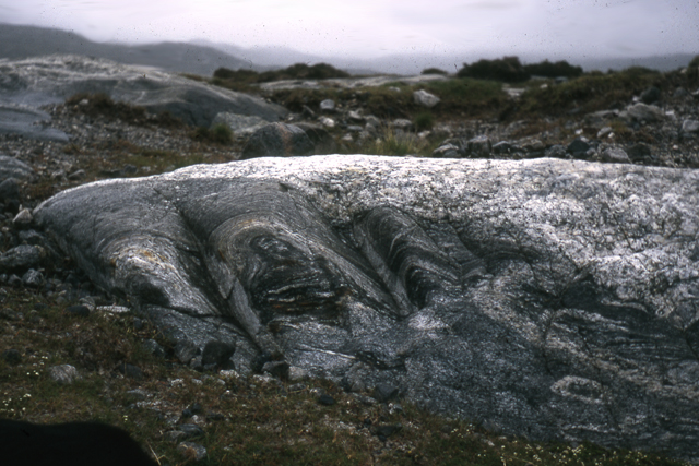Folded gneiss, old path to Reinigeadal, Harris