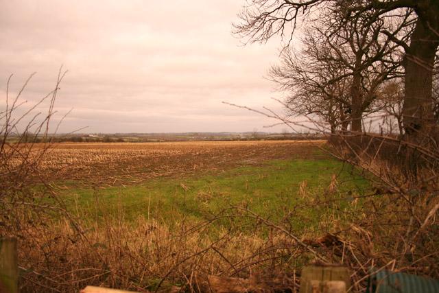 Farmland near Queniborough