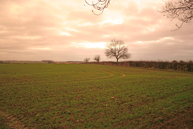 Farmland near Queniborough