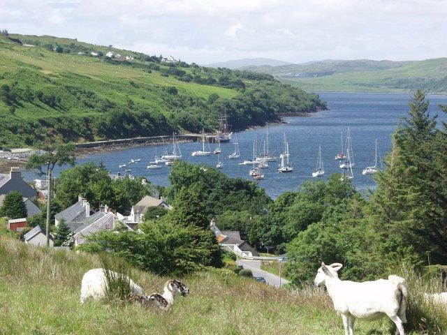 The anchorage, Loch Harport