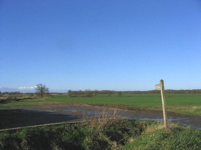 Footpath near Roxwell, Essex