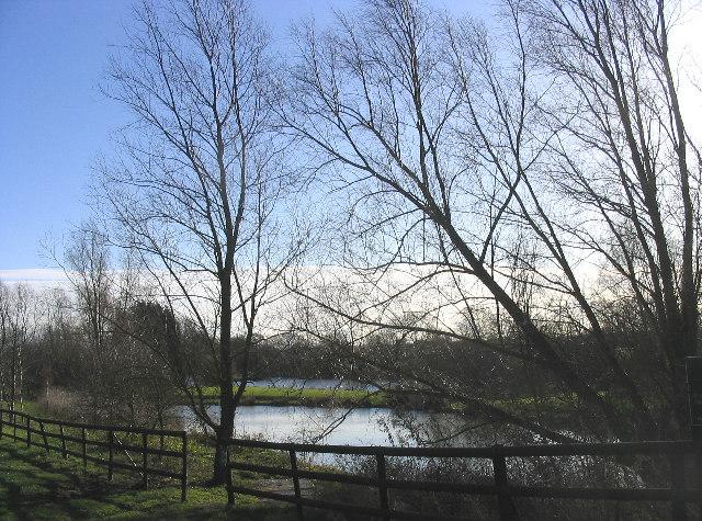 Newland Hall Fishing Lakes