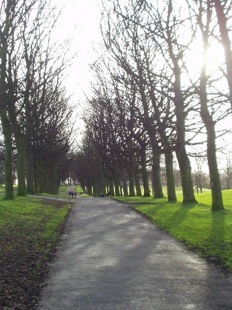Winter sunshine, Woodhouse Moor, Leeds