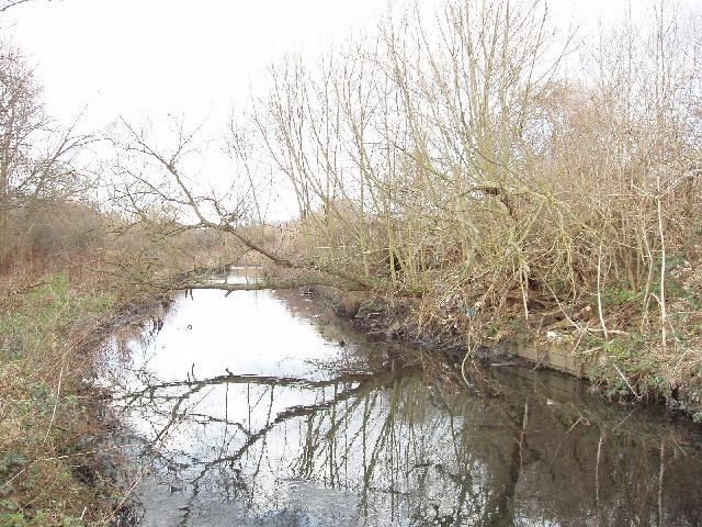 River Crane by Hounslow Heath