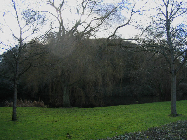 Pleshey Castle