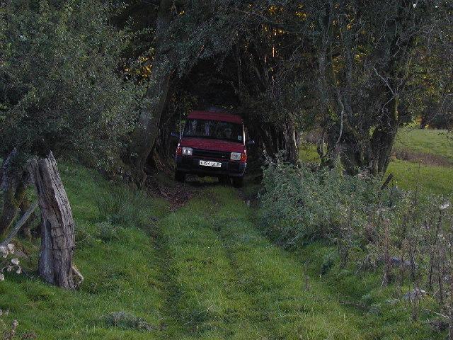 Green lane near Rhydymain