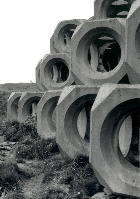 Cast concrete forms