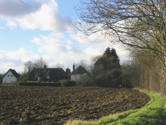 House, field and hedge