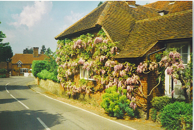 Wistaria-clad Old Forge Cottage in East Clandon