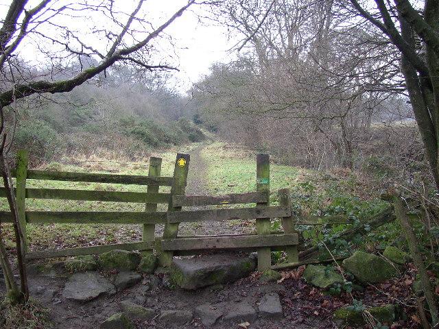 Footpath near Dob Park Bridge, Norwood, North Yorkshire