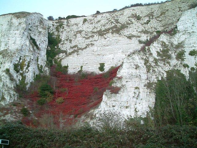 Chalk cliffs above River Ouse