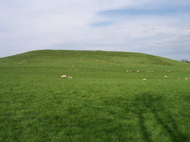 Coneyburrow Hill, Longdon
