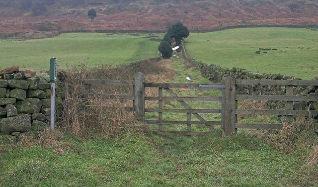 Bridleway near Fryup Lodge