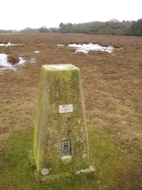 Trig pillar on Longcross Plain, New Forest