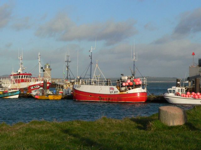 Holyhead Fish Dock