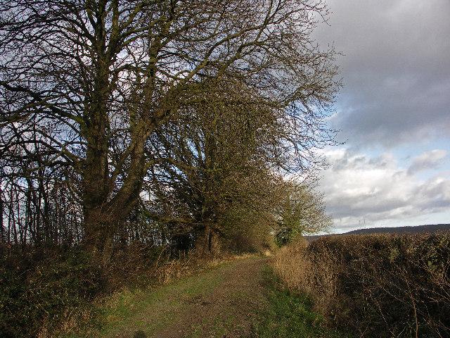 Ridgeway near Lewknor