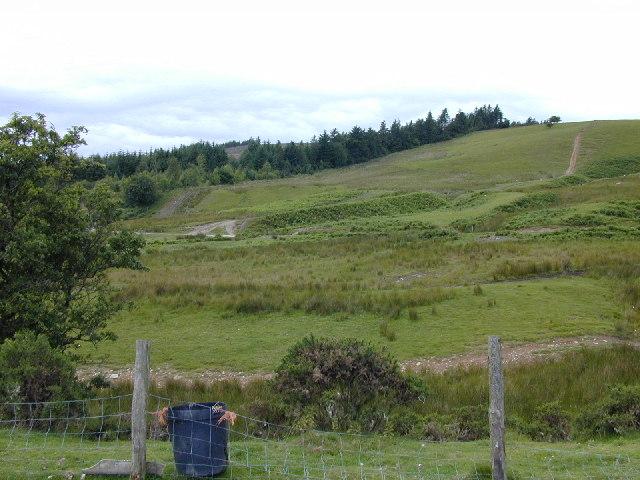 Cwm Lluest near Cwm Derw