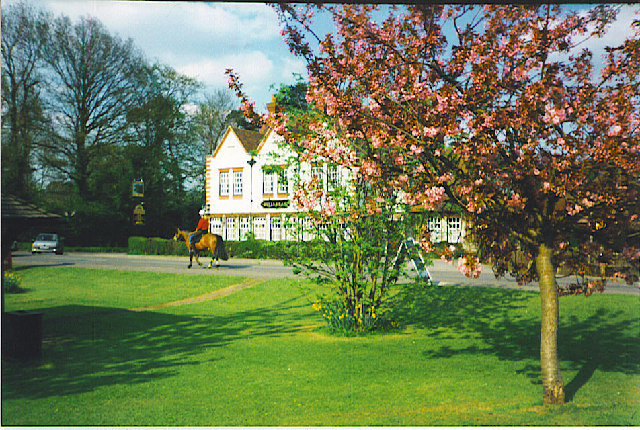 Ewhurst, Village Green in Spring