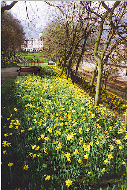 Union Terrace Gardens in spring.