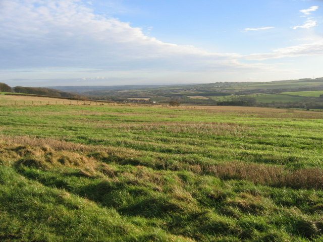 View over Deerness Valley from Low Esh Farm