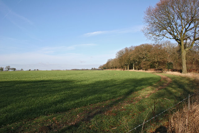 Farm land south of West Tisted
