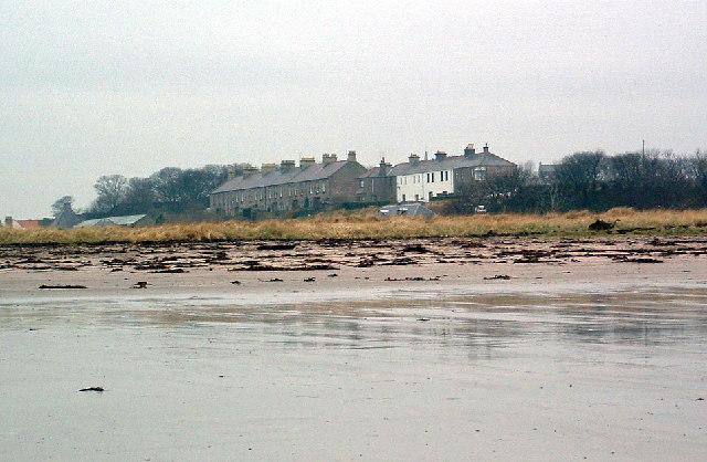 Coast guard houses and Deavon Terrace, Berwick