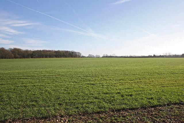 Farm land  near Punsholt Farm