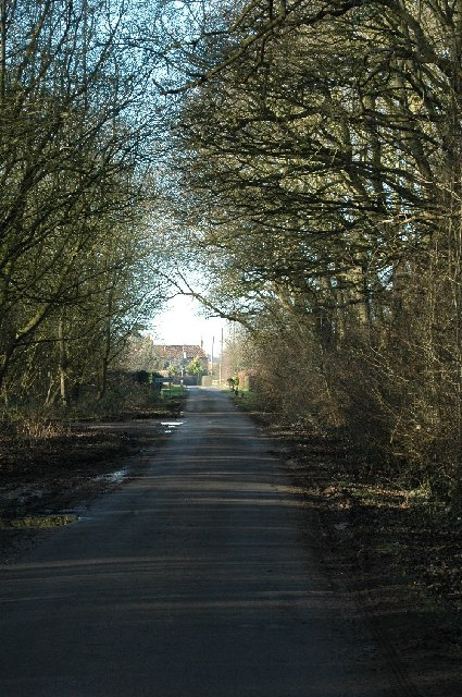 Town End Plantation