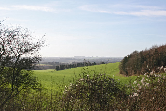 Valley to NW of West Tisted