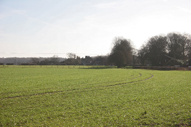 Looking across farmland towards West Tisted