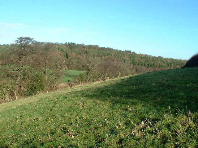 Towards Bank Wood and Furnace Hill