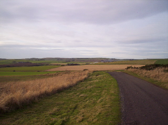 Fields, Farm Track and Jackston Farm