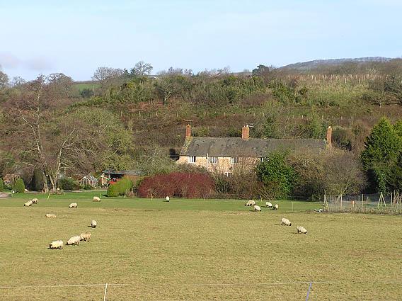 Water Farm