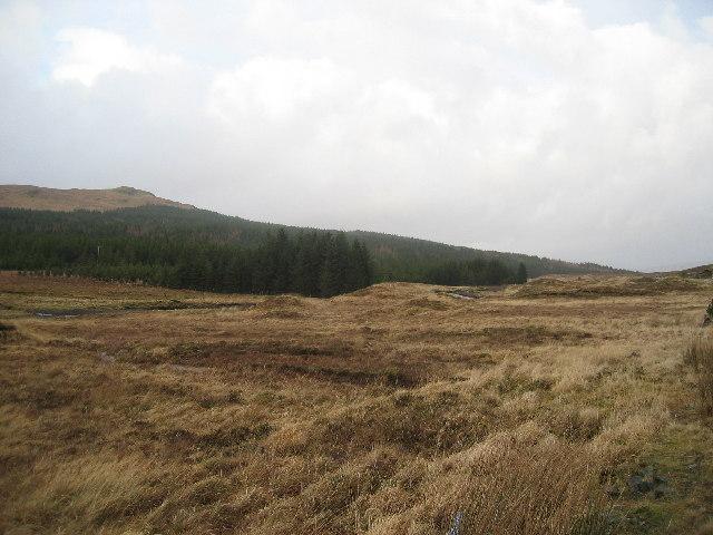 Open Moor