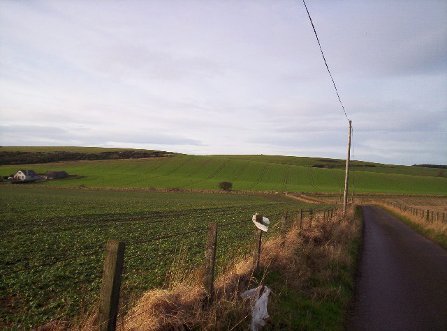 Cloch Hill and Fields