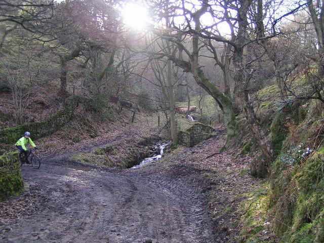 Mill Clough