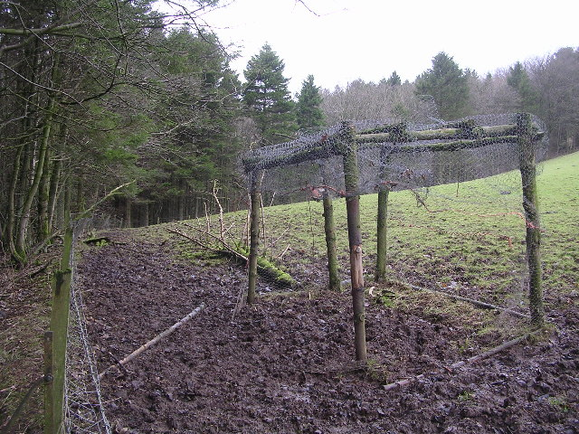 Crow Trap in Muddy Field, near Craigbarnet Farm