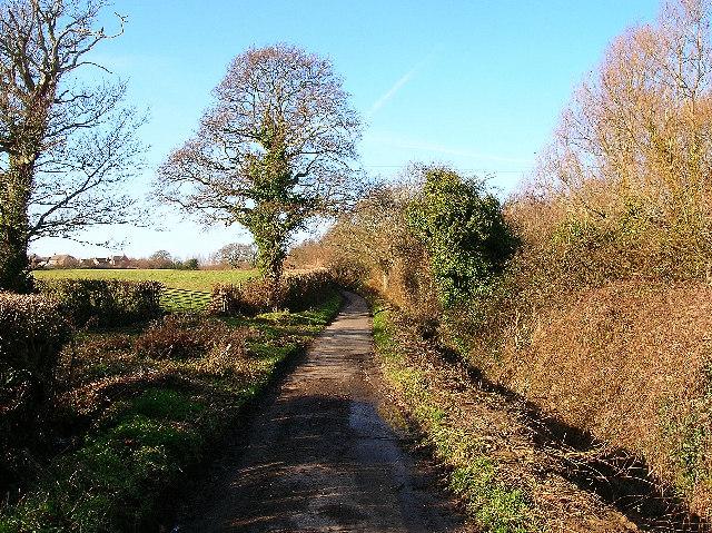 Peelings Lane near Stone Cross