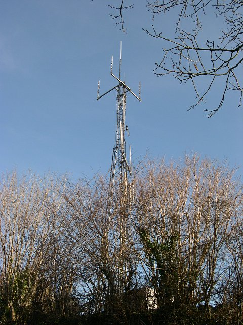 Mast behind the hedge