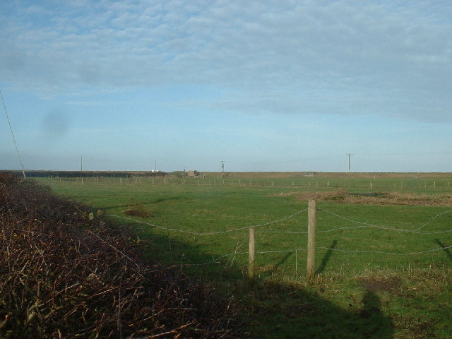 Farmland, Pilling Lane