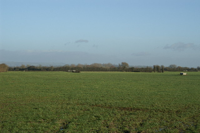 Field on Mark Moor