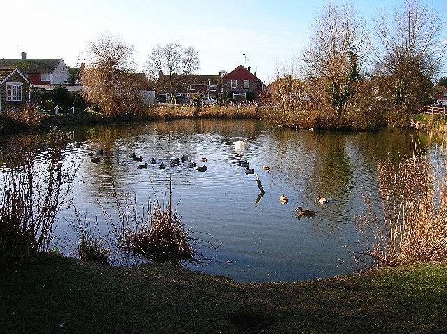 Village pond, Westham