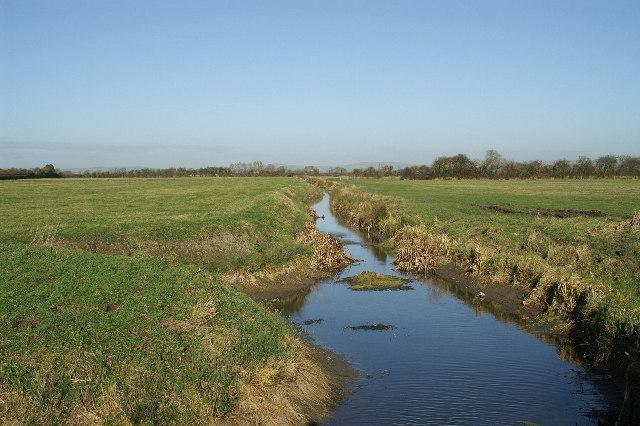 Rhyne on Huntspill Moor