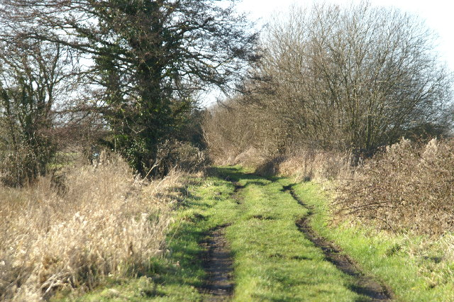 Track on Chilton Moor