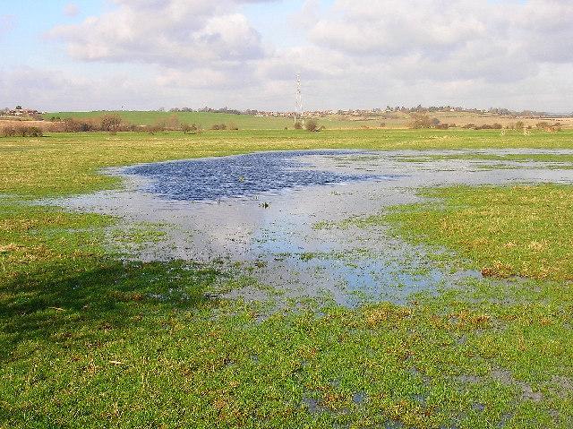 Flooded field, Hooe Level