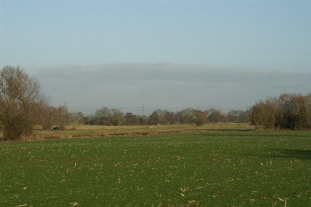Fields on Chilton Moor