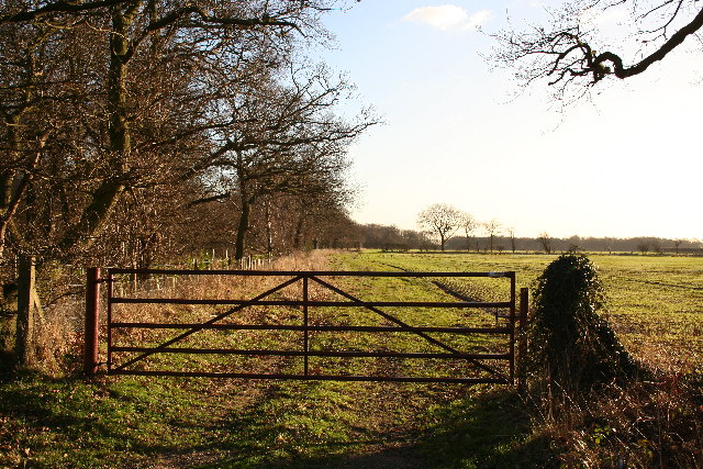 Thorney Gate