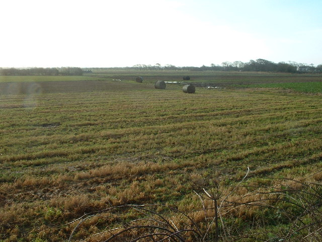 Farmland near Fluke Hall