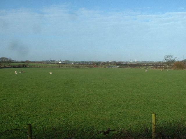 Farmland near Little Singleton