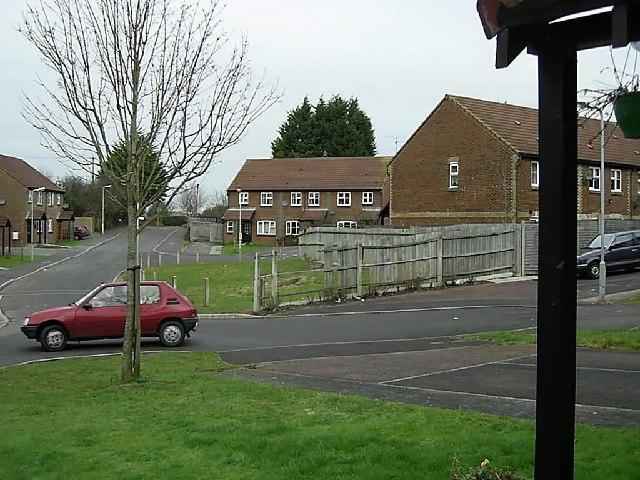 Burton Wood, Wool